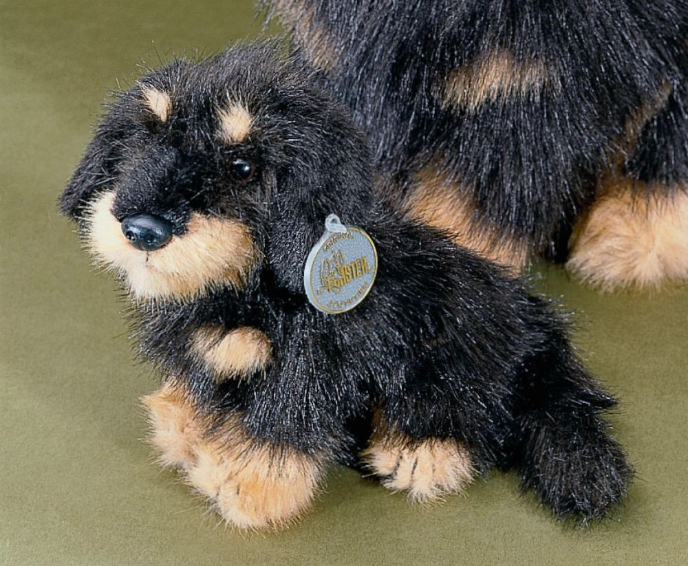 f rster rauhaardackel langhaar sitzend klein 19cm 5517 f rster stofftiere hunde. Black Bedroom Furniture Sets. Home Design Ideas