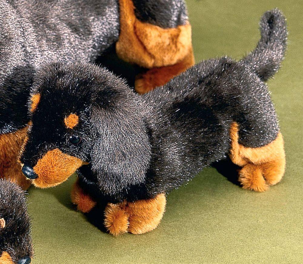 f rster kurzhaardackel stehend 26cm 1555 f rster stofftiere hunde. Black Bedroom Furniture Sets. Home Design Ideas